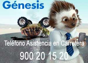 Asistencia en Carretera Génesis